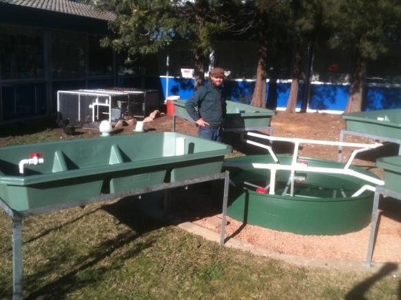 Successful Aquaponics System Installation