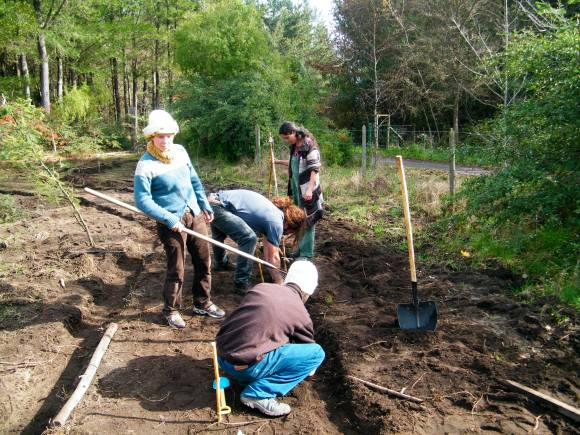 Students implementing irrigation canals alongside the pathways of the Forest Garden at El Manzano